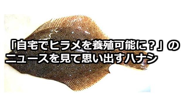 f:id:maskednishioka:20180301101715p:plain