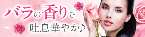 f:id:massa55-yonekura:20170927110717j:plain