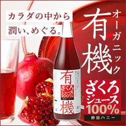 f:id:massa55-yonekura:20171009163000j:plain