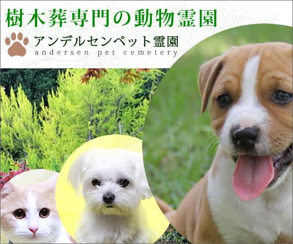 f:id:massa55-yonekura:20171019165915j:plain