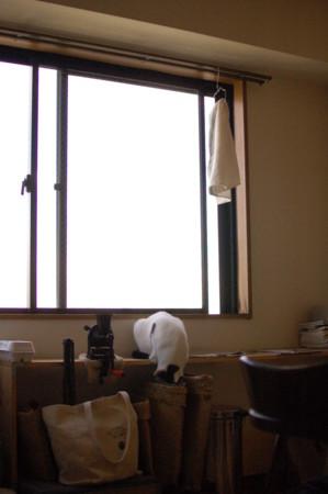 f:id:masubon:20111125132036j:image
