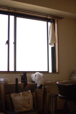 f:id:masubon:20111125132043j:image