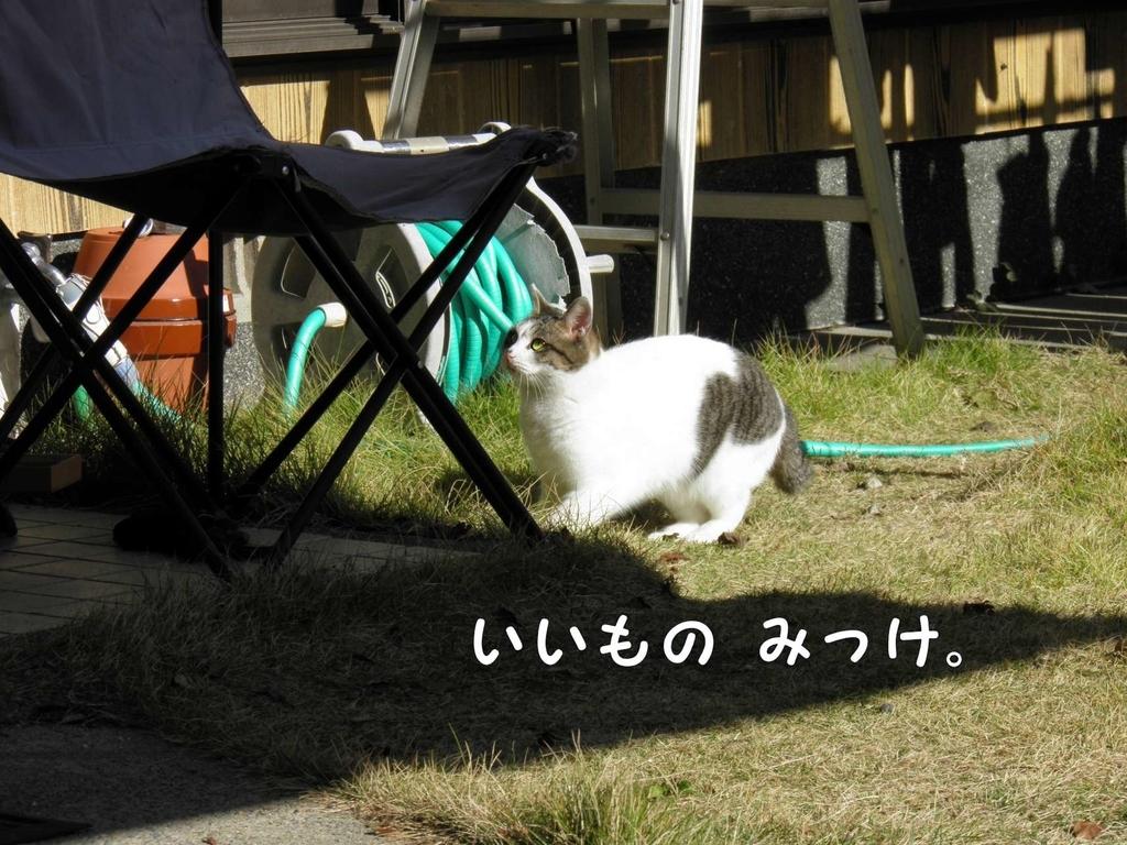 f:id:masuhiro6595:20181225162845j:plain