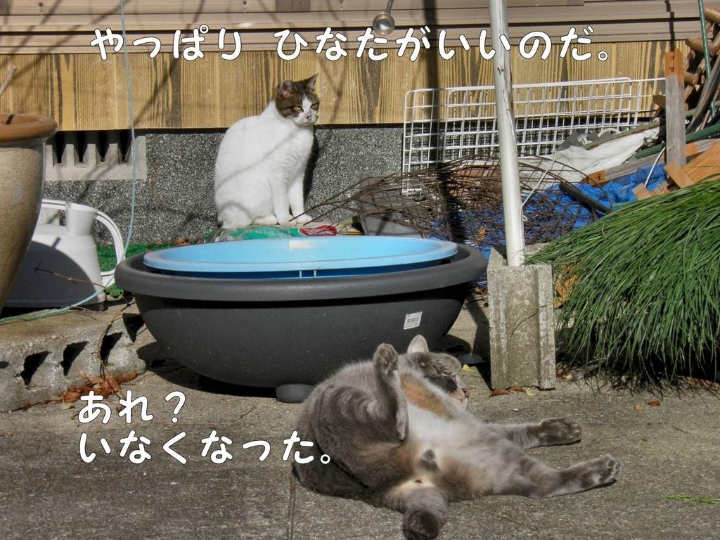 f:id:masuhiro6595:20181225163517j:plain