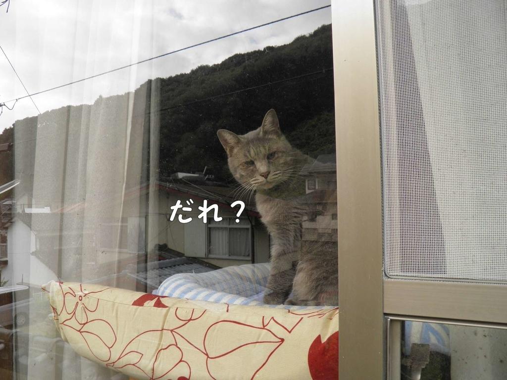 f:id:masuhiro6595:20190105202909j:plain
