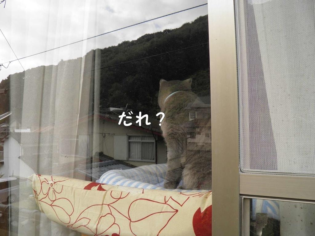 f:id:masuhiro6595:20190105203031j:plain