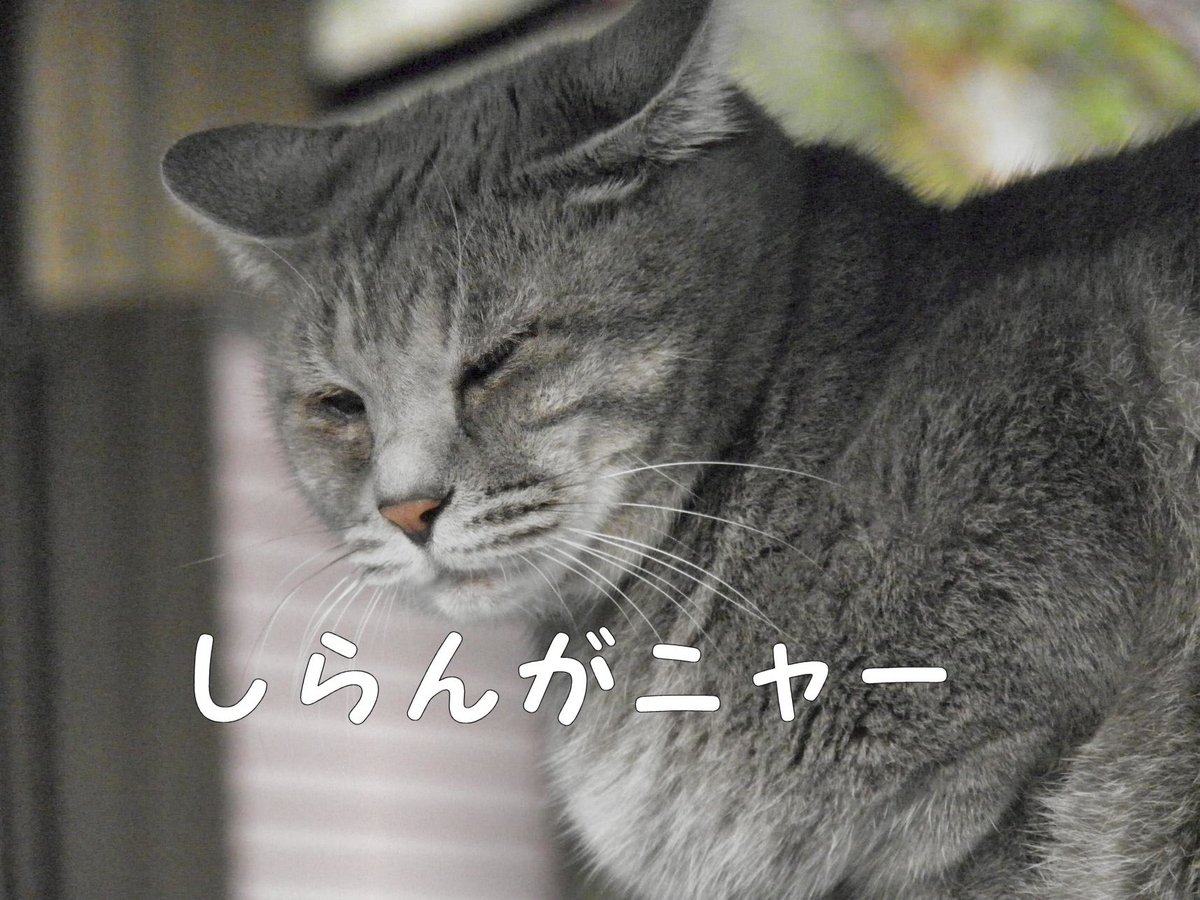 f:id:masuhiro6595:20190509201926j:plain