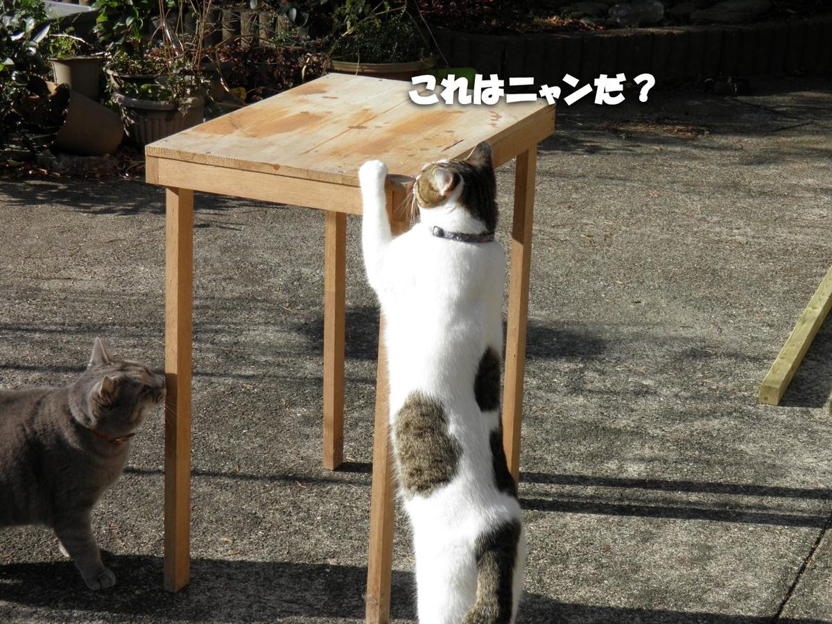 f:id:masuhiro6595:20200207121314j:plain