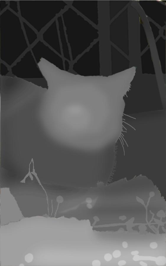 3Dステレオグラム写真 高低差データ画像