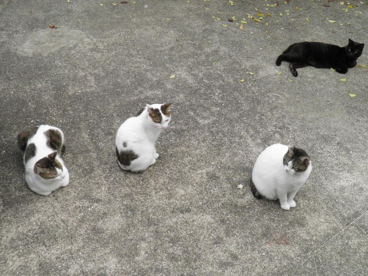ブリエ一家の写真