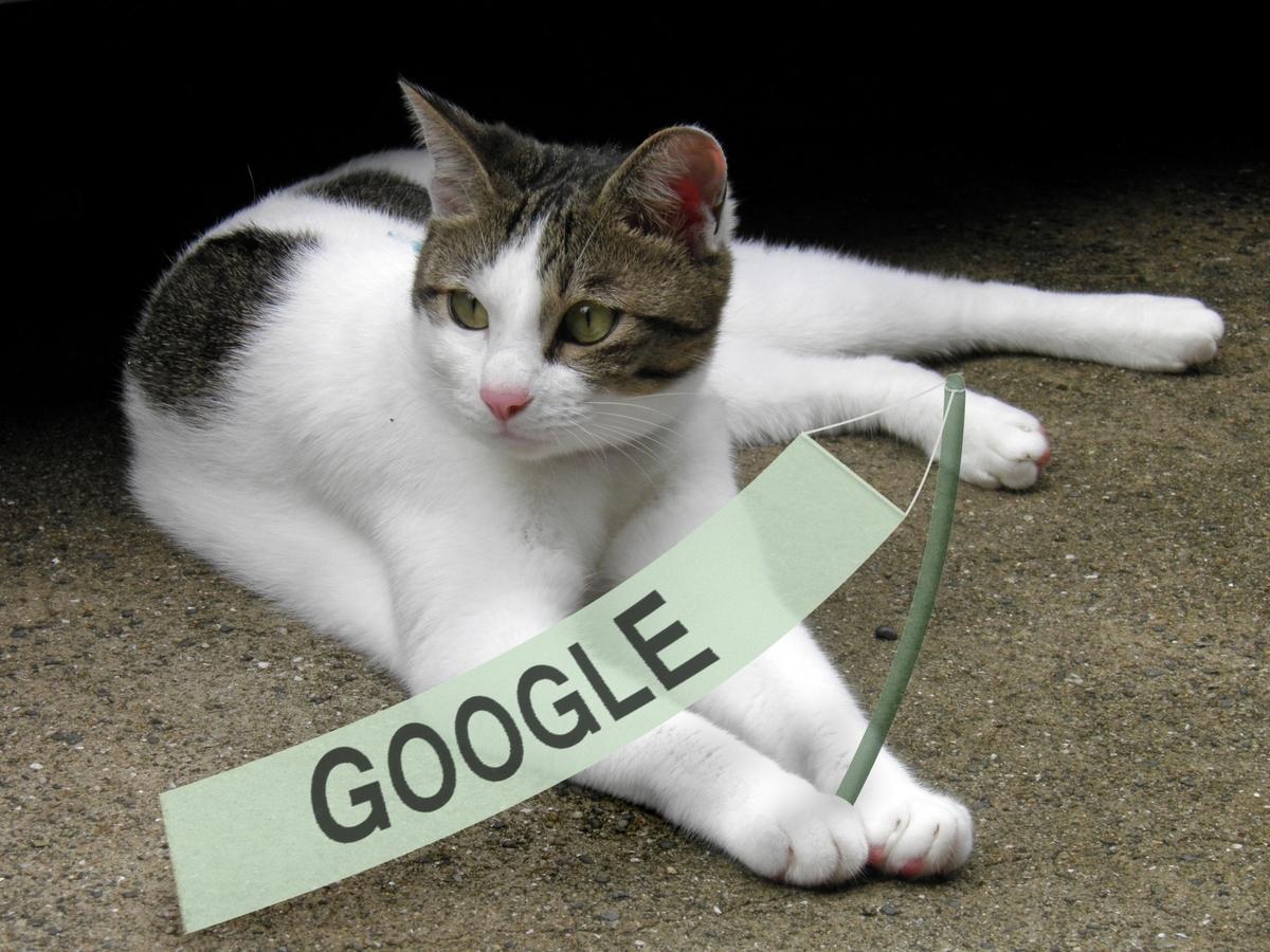 グーグルの表題画像 かなたキャット
