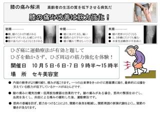 せき美容室_ひざ-1-001.jpg