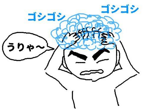 f:id:masuo-anago4649:20170201142033j:plain