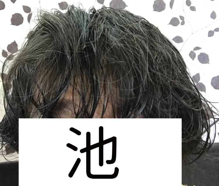 f:id:masuo-anago4649:20170216160541j:plain