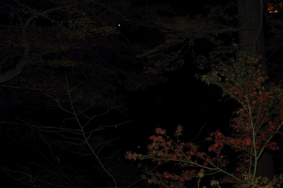 f:id:masuraoo:20120115173833j:plain