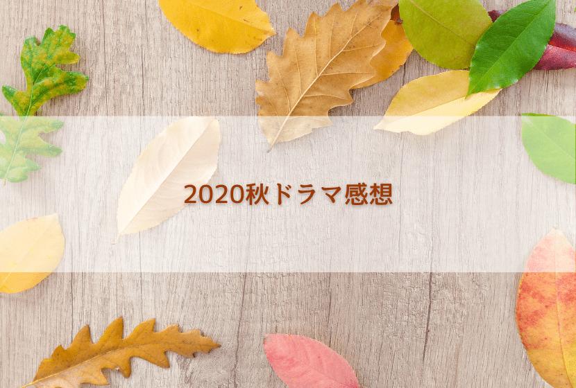 f:id:matchadrama:20201028164607p:plain