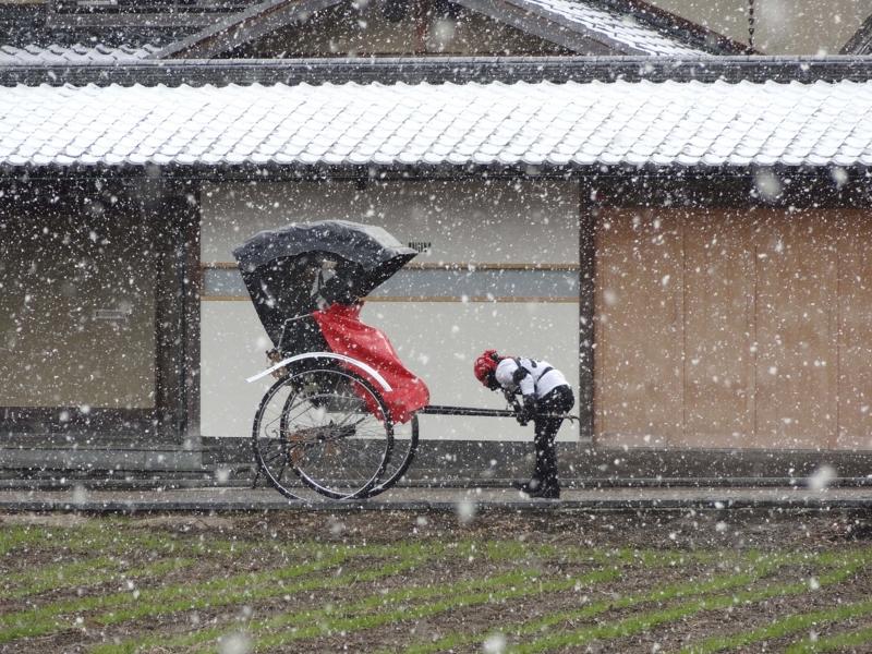 京都新聞写真コンテスト 雪の嵯峨野にて