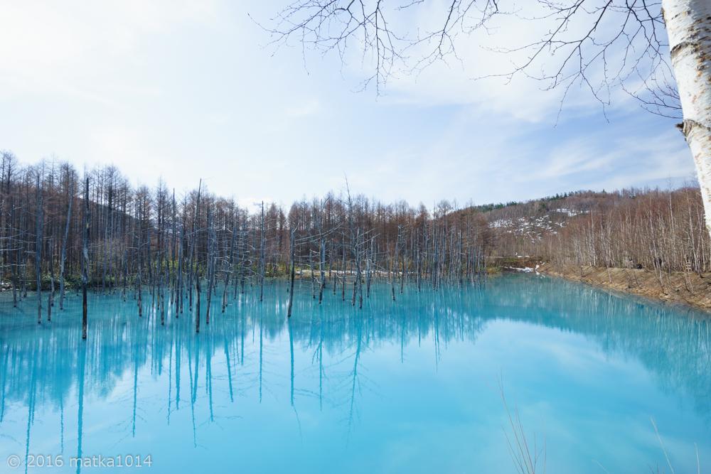 青い池(広角レンズSONYα7Ⅱ)作例2
