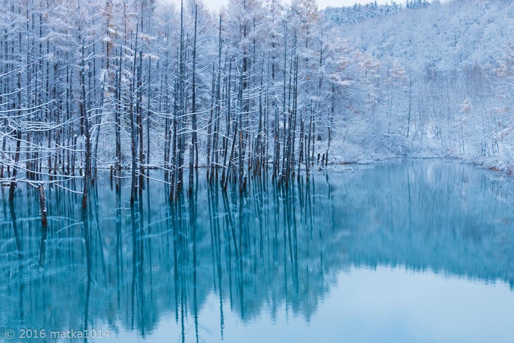 初冬の青い池