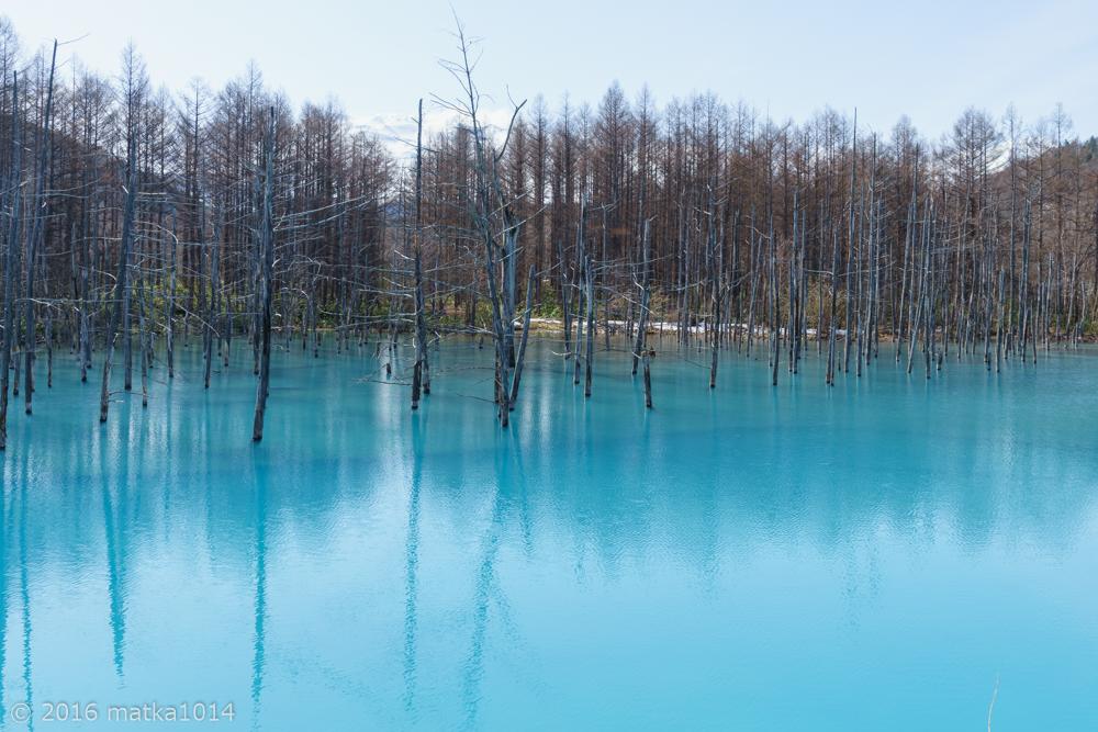 青い池3(SONYα7Ⅱ)