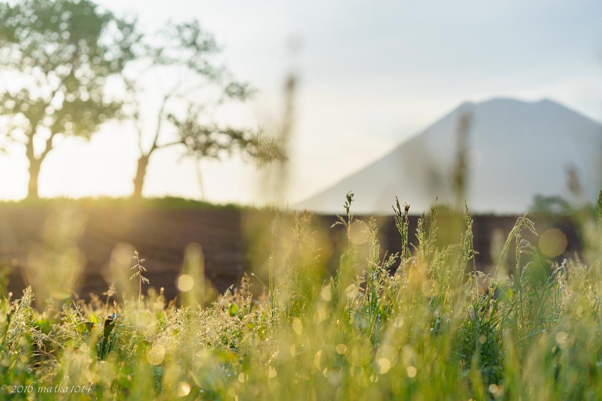 ニセコの朝焼け 羊蹄山