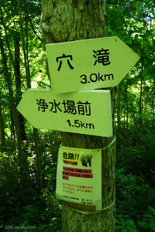 ヒグマの生息地 穴滝