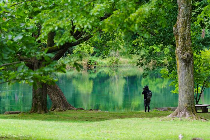 鳥沼公園の青い沼