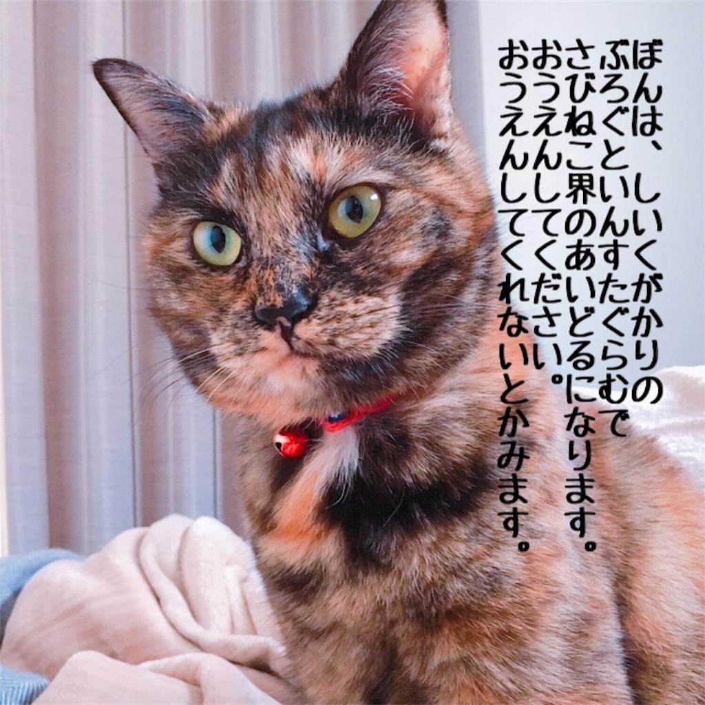 f:id:matsugorookoku:20181104093300j:image