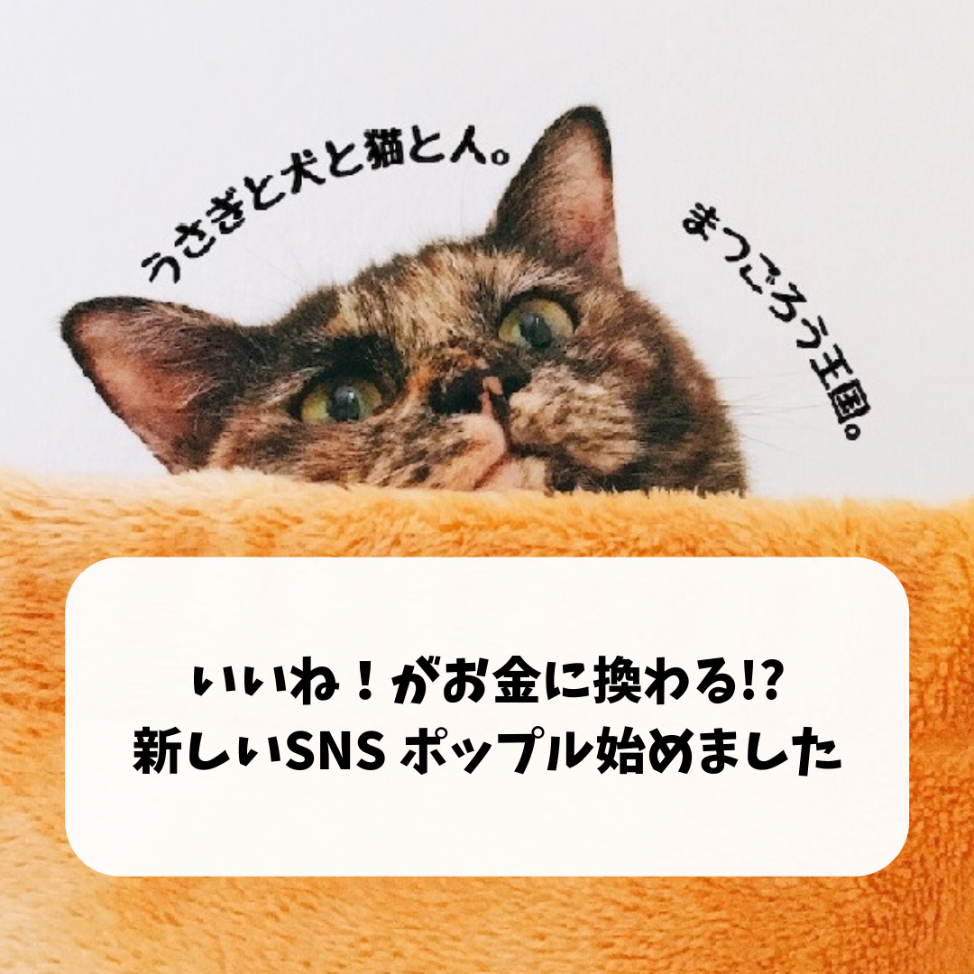 f:id:matsugorookoku:20190420115414p:plain