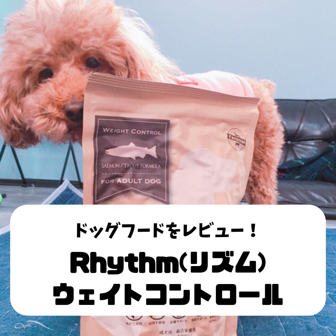 f:id:matsugorookoku:20190423111255p:plain