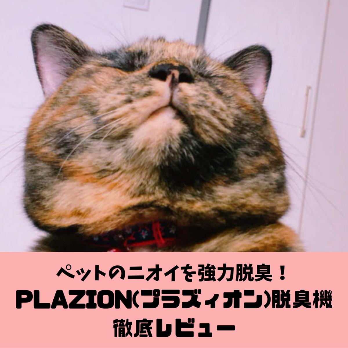 f:id:matsugorookoku:20190511224254p:plain