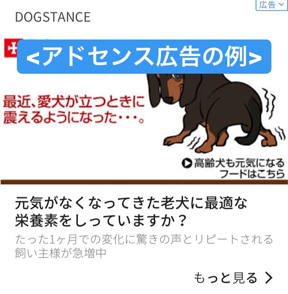 f:id:matsugorookoku:20190515121059j:image