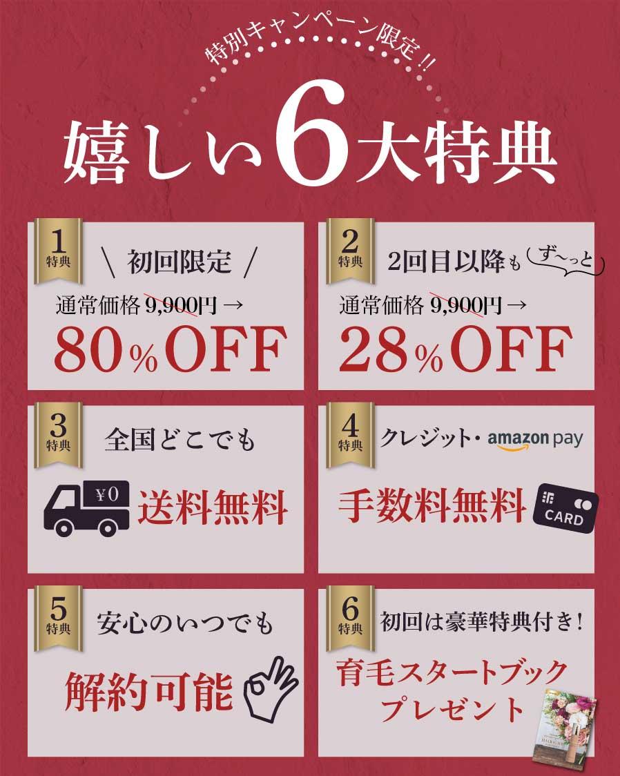 f:id:matsukichi230:20210222105743j:plain