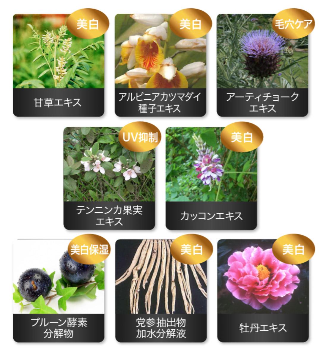 f:id:matsukichi230:20210406190354j:plain