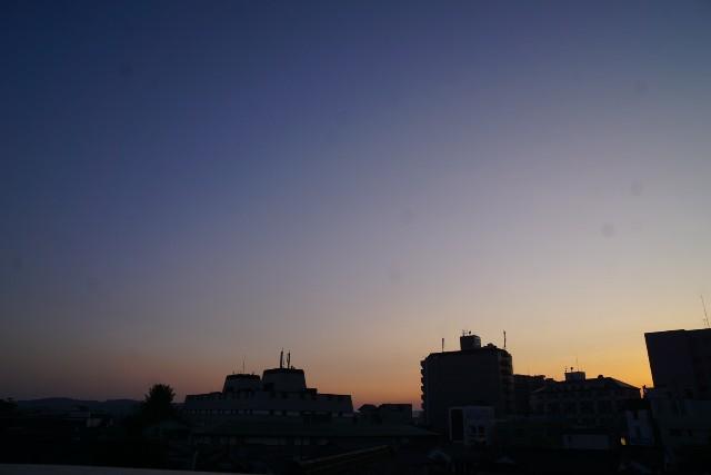 f:id:matsuko-555:20201101133904j:image