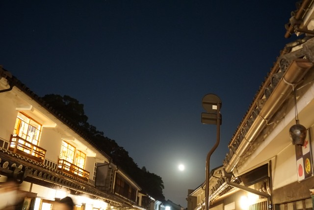f:id:matsuko-555:20201101134132j:image