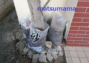 f:id:matsumama:20181220211035j:plain