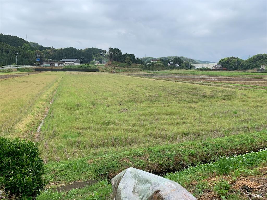 f:id:matsumo_saga:20200504094615j:image