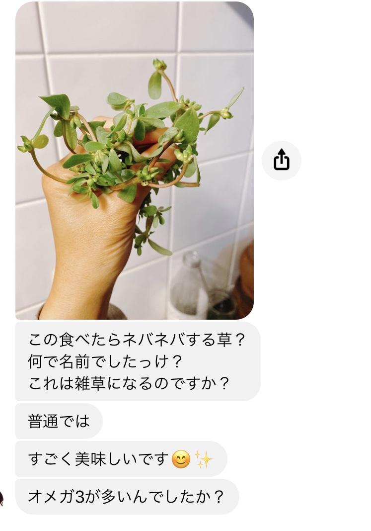 f:id:matsumo_saga:20200531084917j:plain
