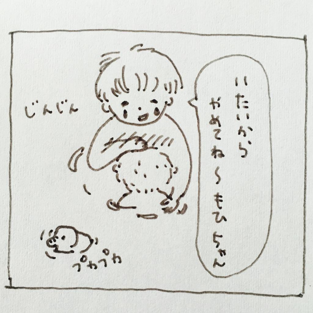 f:id:matsumoto_ten:20170518123045j:plain