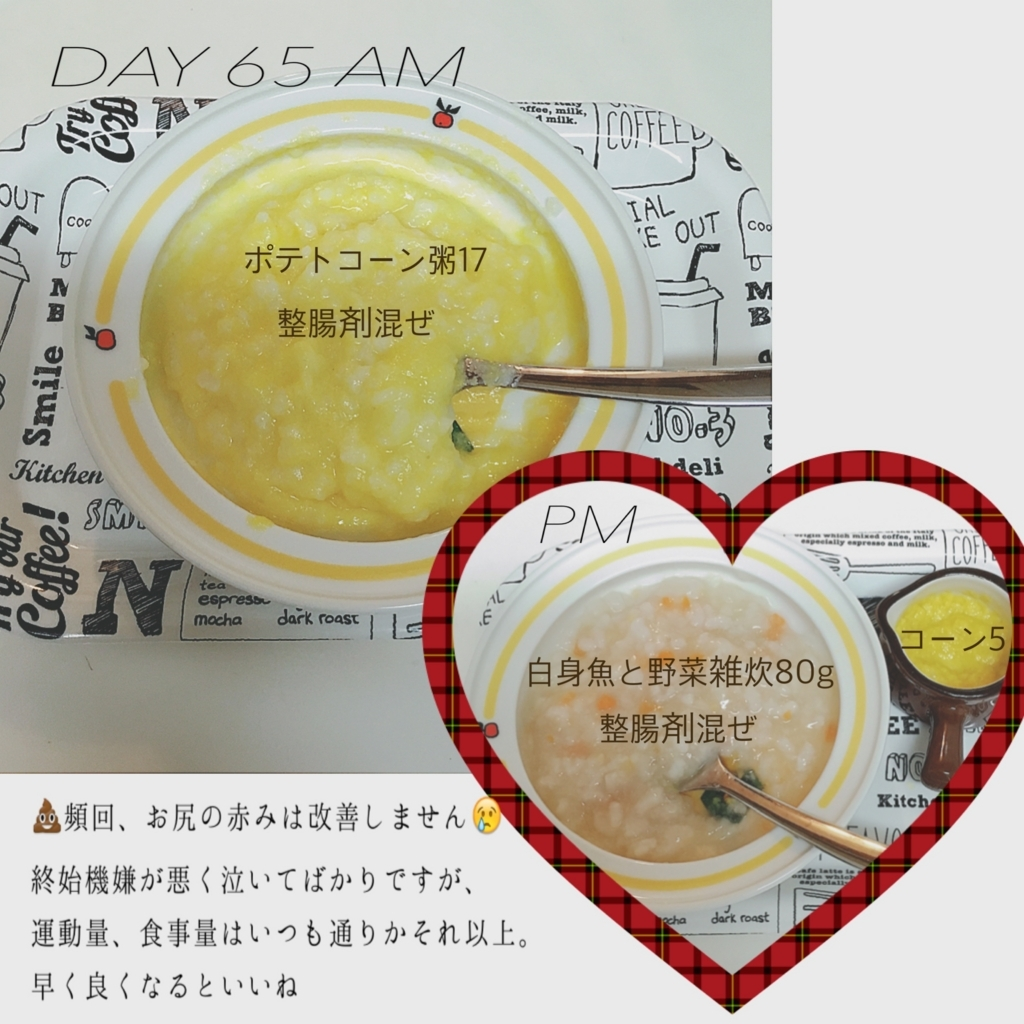 f:id:matsumoto_ten:20170730080752j:plain