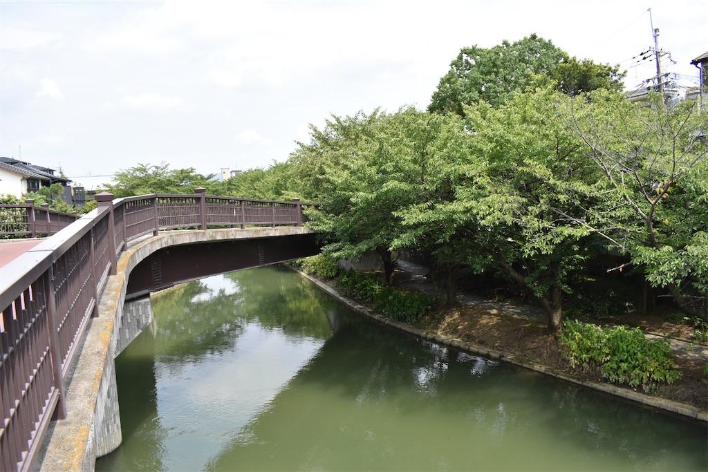 f:id:matsumotoyusuke:20201020205020j:image
