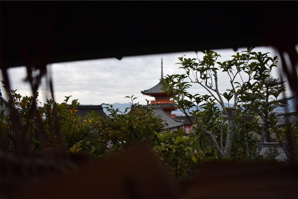 f:id:matsumotoyusuke:20201104115123j:image