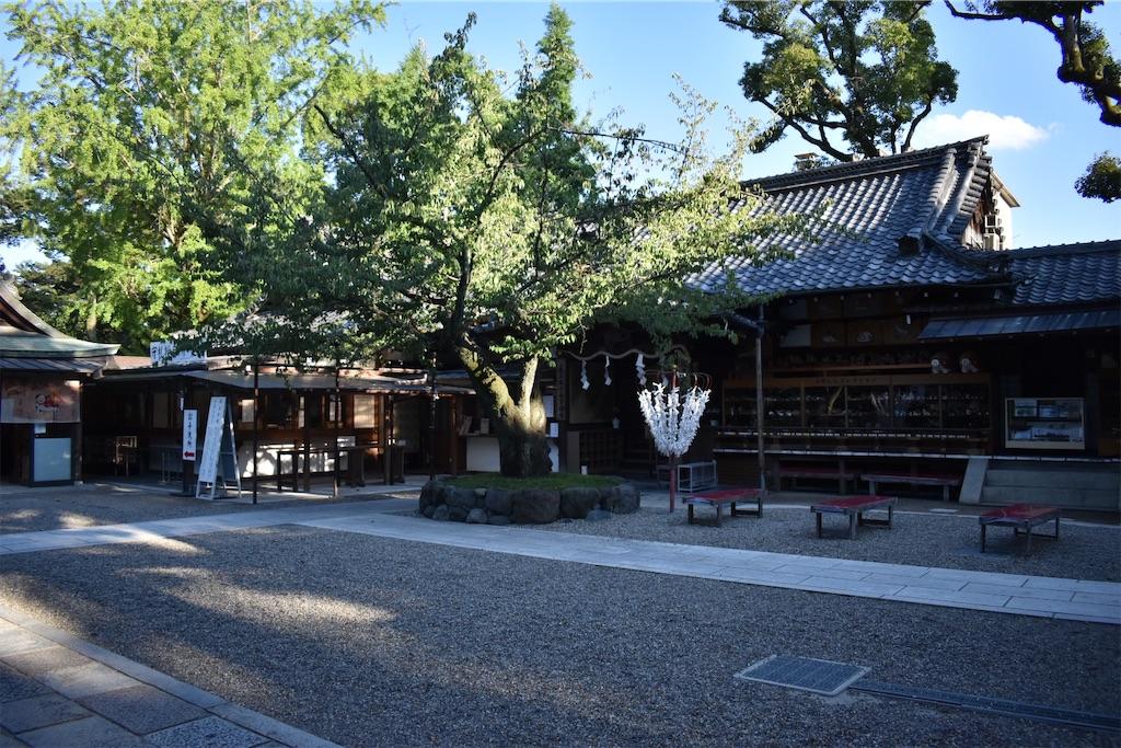 f:id:matsumotoyusuke:20201123173914j:image