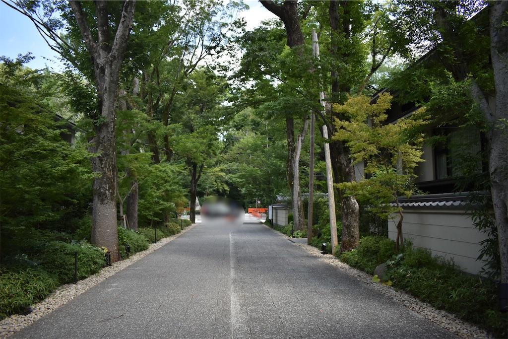 f:id:matsumotoyusuke:20201123182122j:image