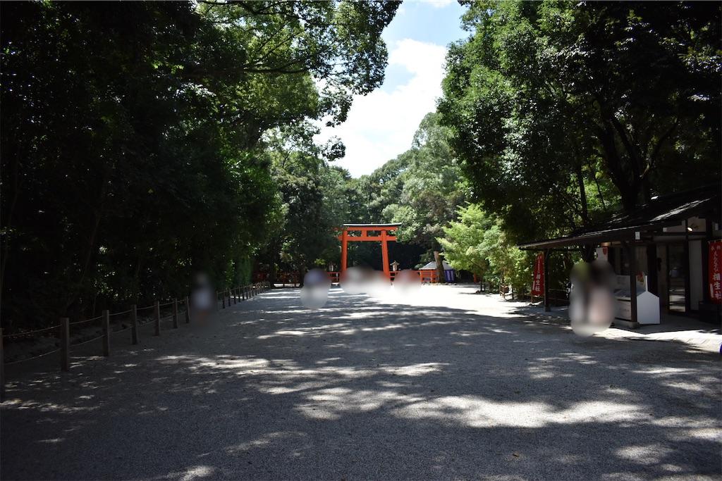 f:id:matsumotoyusuke:20201123182457j:image
