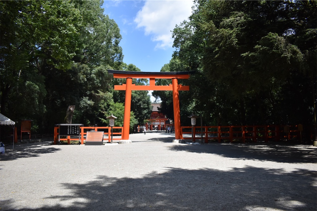 f:id:matsumotoyusuke:20201123182639j:image