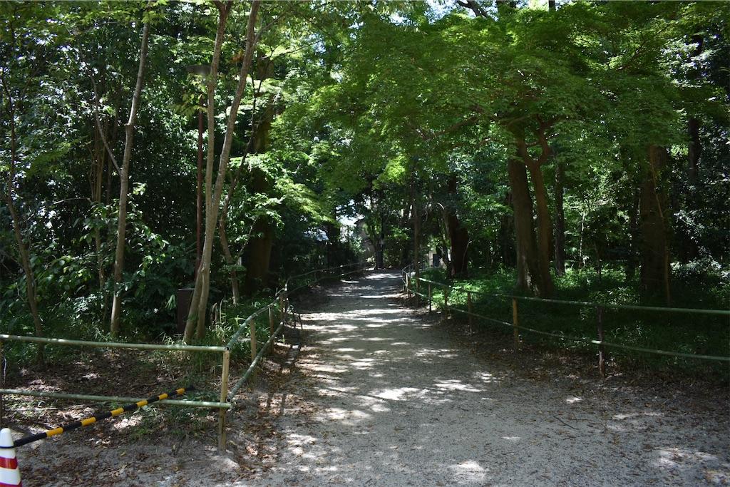 f:id:matsumotoyusuke:20201123183302j:image