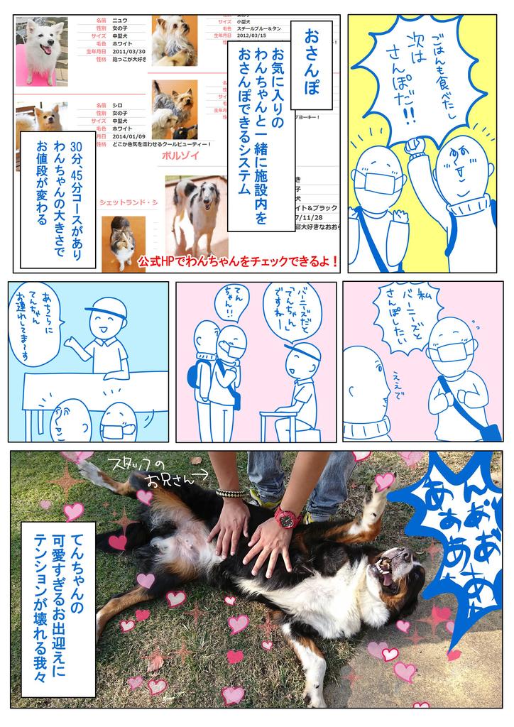 f:id:matsumurako:20181116222800j:plain