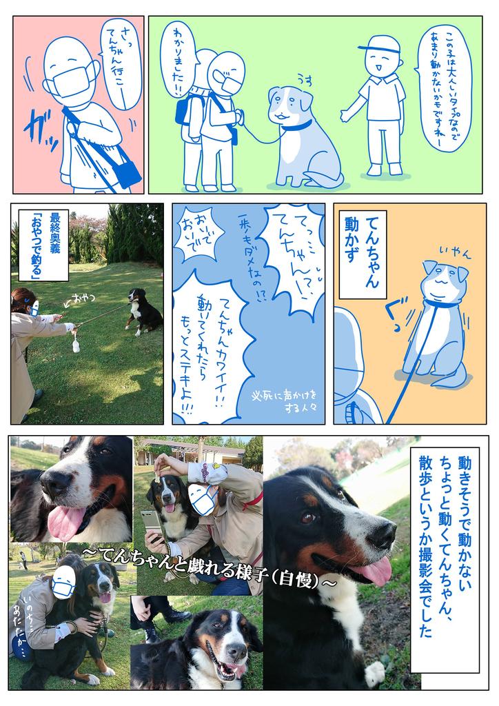 f:id:matsumurako:20181116222827j:plain